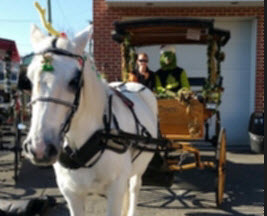grinch-carriage-ride