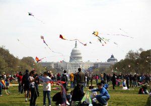 Cherry Blossom kite-fest