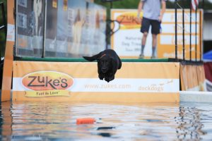 Dock Dogs IMG_4499-Large